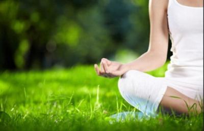 ELM Yoga logo